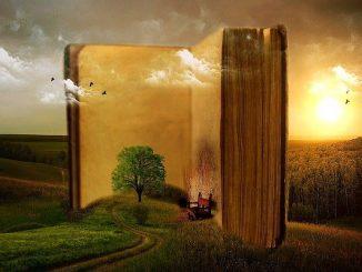 habitos de lectura